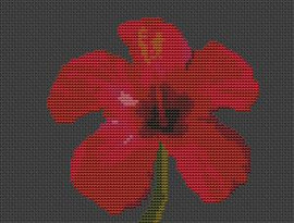 Hibiscus Flower Cross Stitch Chart