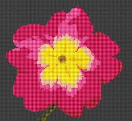 Primula Flower Cross Stitch Chart