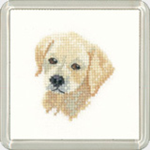 Golden Labrador Coaster Kit By Heritage Crafts