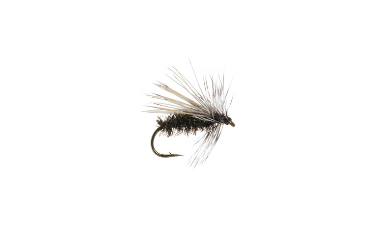 Peacock Caddis