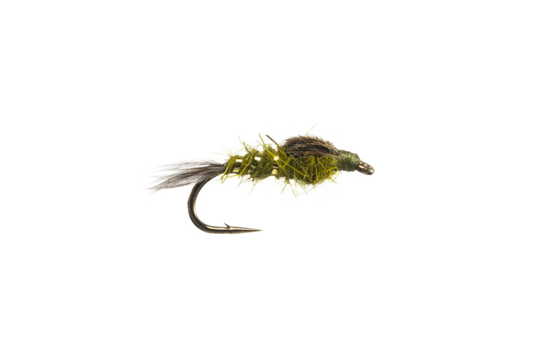 Hares Ear - Olive
