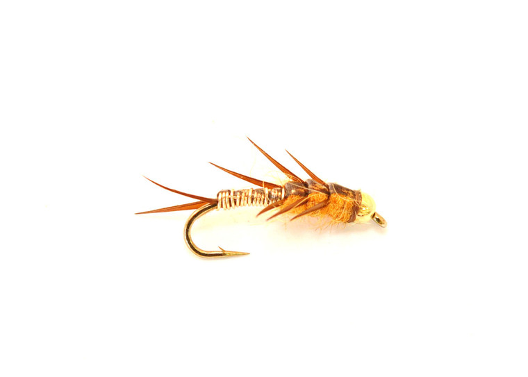 Rolling Stonefly Nymph - Golden