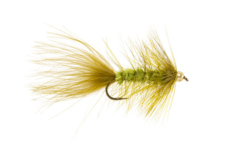 Woolly Bugger - Olive Bead