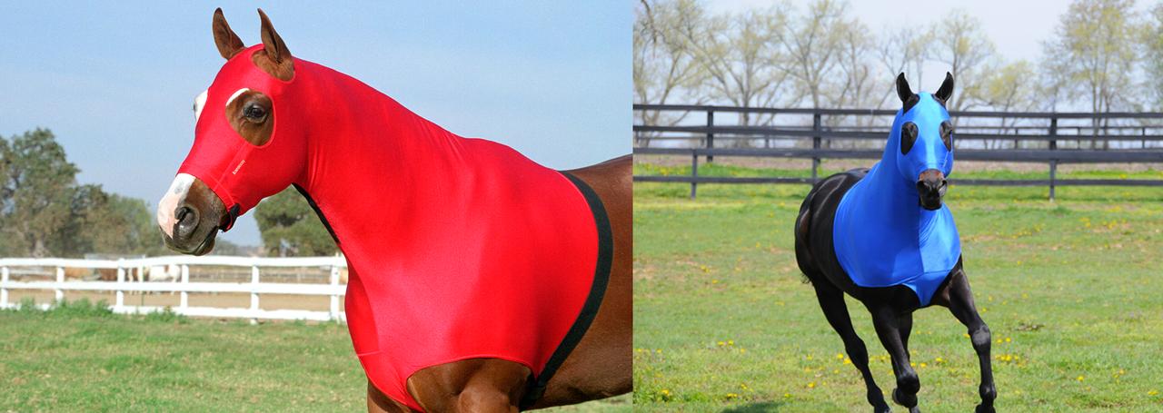Robinhoods Horse-wear