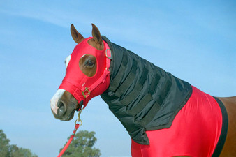 Neck covers for horses, headless horse hood, horse blanket neck covers