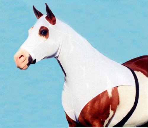 Kool Stretch Mesh horse hood with zipper By Robinhoods