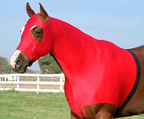 6 oz. Lycra stretch horse hood with Zipper by Robinhoods