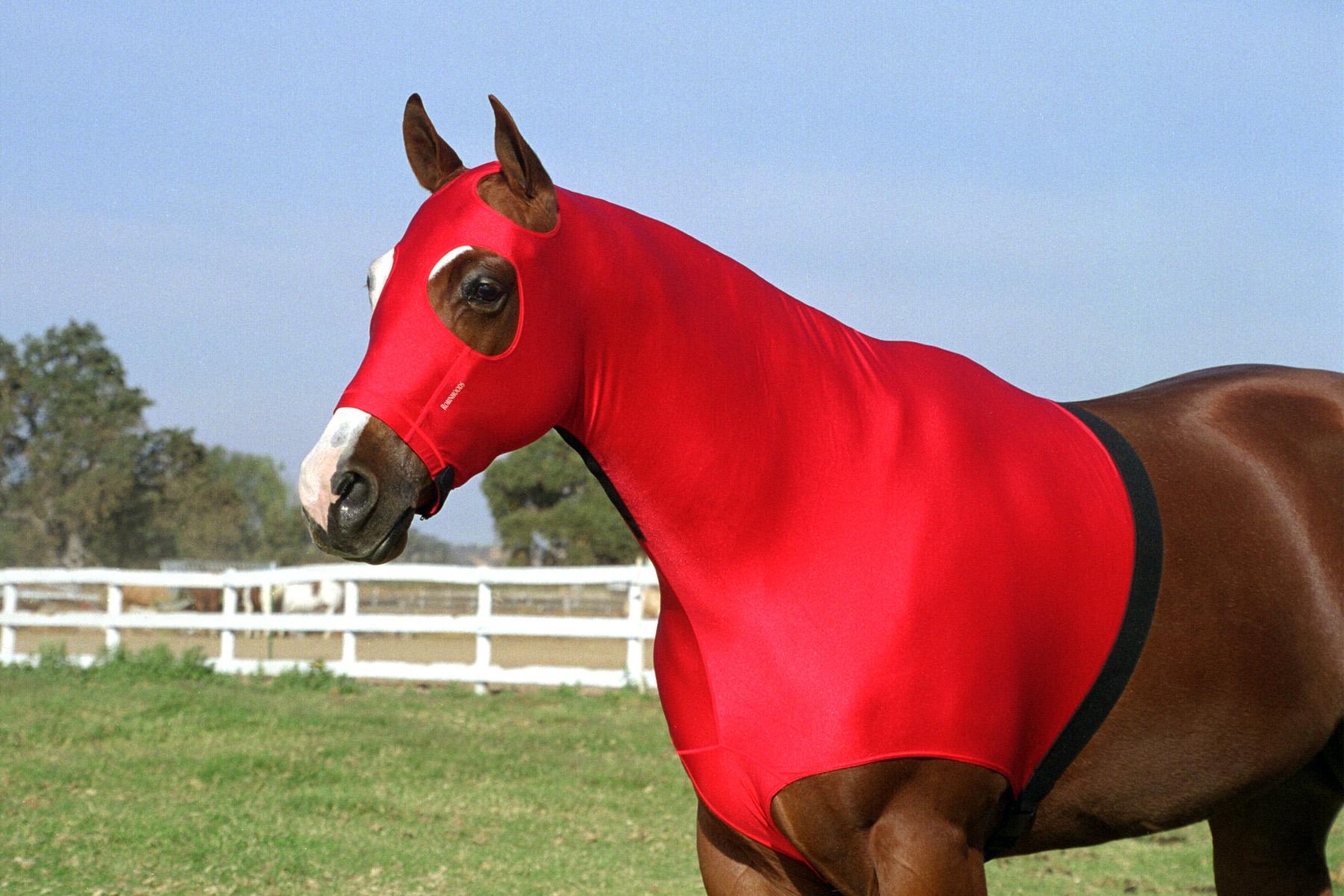 Robinhoods Horse Hood, Slinky, Sleazy