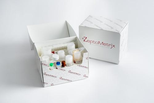 NATtrol Human T-Lymphotropic Virus HTLV Type II Stock