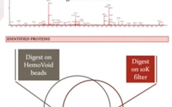HemoVoid™ LC-MS On-Bead For RBC Proteomics