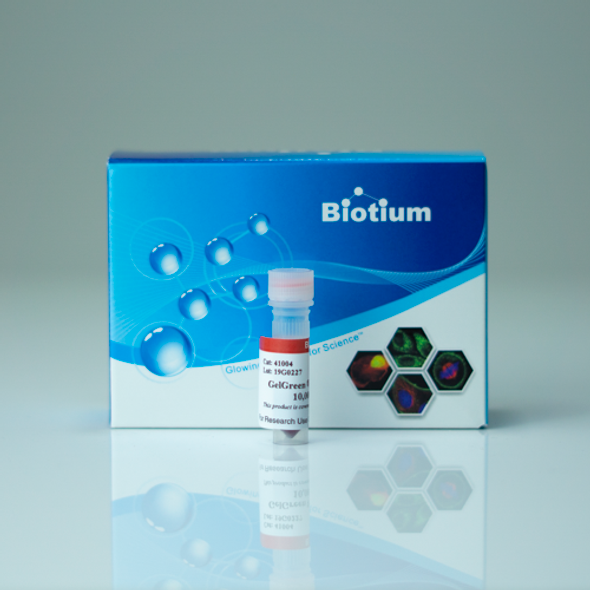 GelGreen® Nucleic Acid Gel Stain
