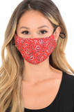 Front View of Red Bandana Fashion Face Mask with Built In Filter and Nose Bar