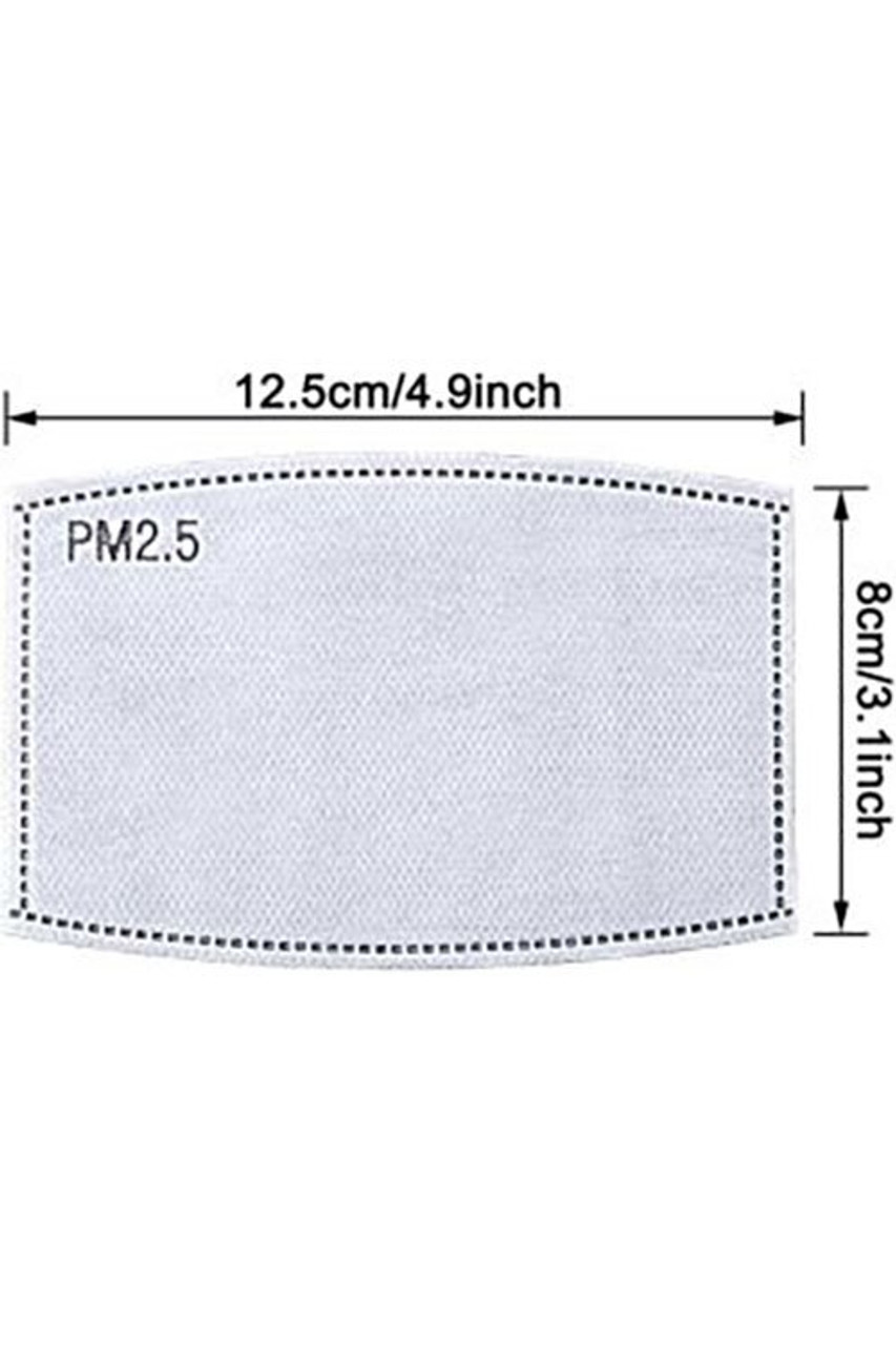 PM2.5 Filters On Sale -10 Pack