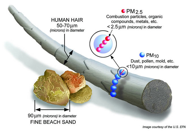 PM2.5 Particle Comparison to human hair, pollun, sand and other tiny particles