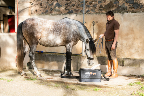 Ice Compression : Moove Equine