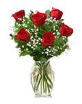 6 Red Ecuadorian Roses Bouquet