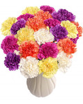 Rainbow of Carnations Bouquet