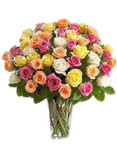 48 Assorted Roses Bouquet (4 colors)
