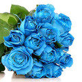 12 Blue Roses Royal Bouquet