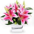 Stargazer Lilies Box