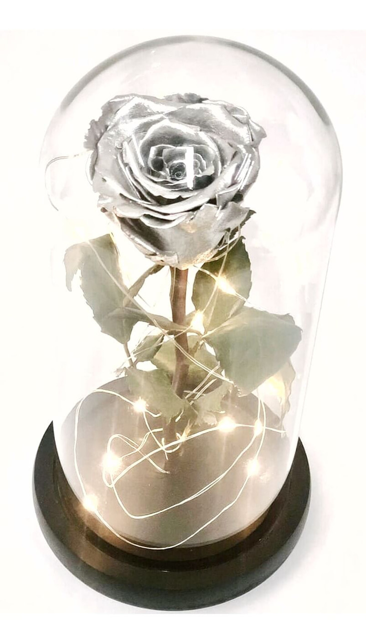 Silver Preserved Rose Fairy Lights Dome - Best Seller!