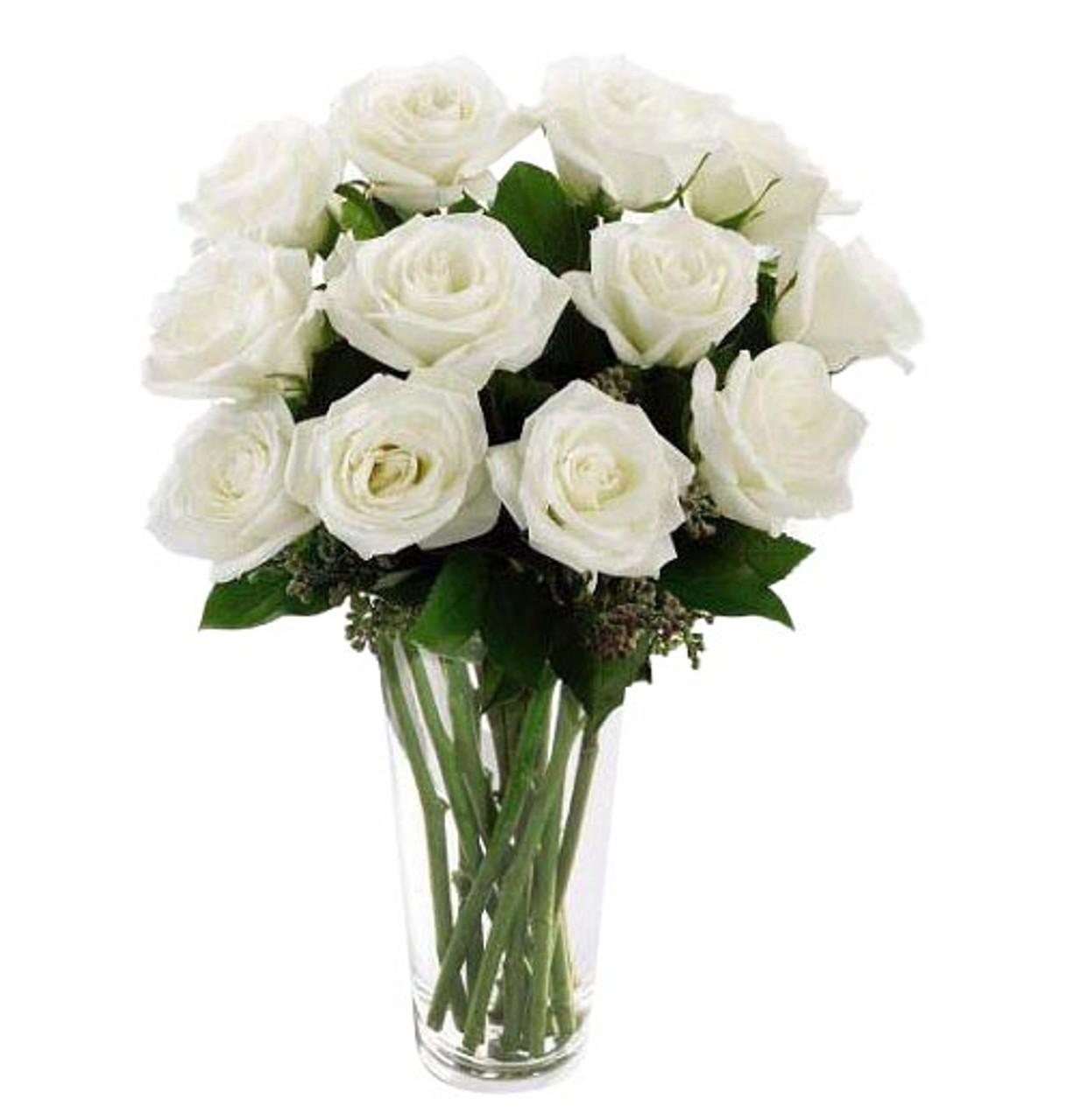 12 White Ecuadorian Roses