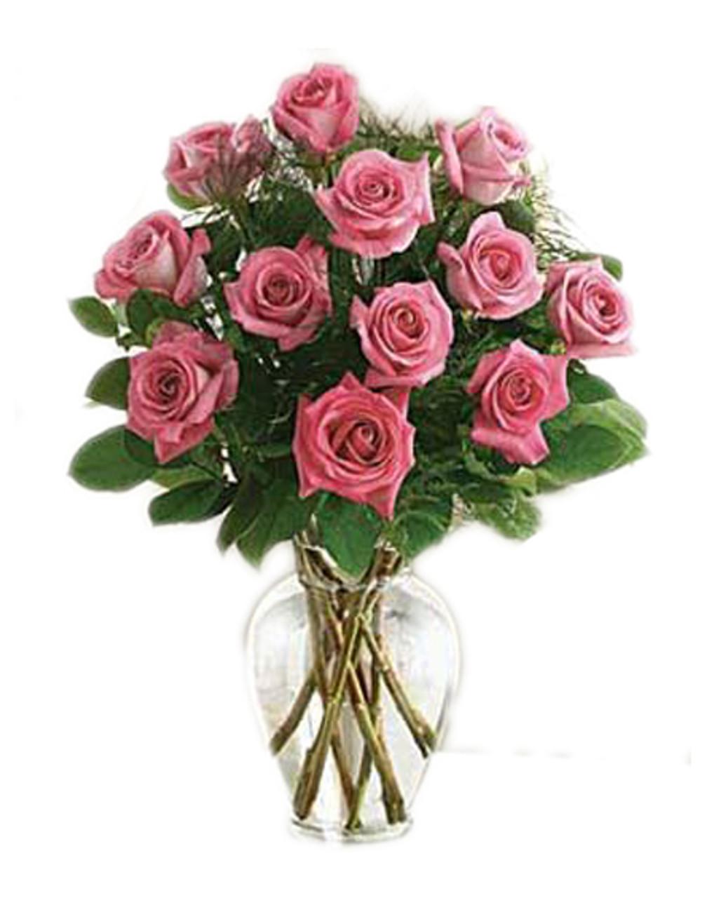 12 Fuchsia Pink Roses