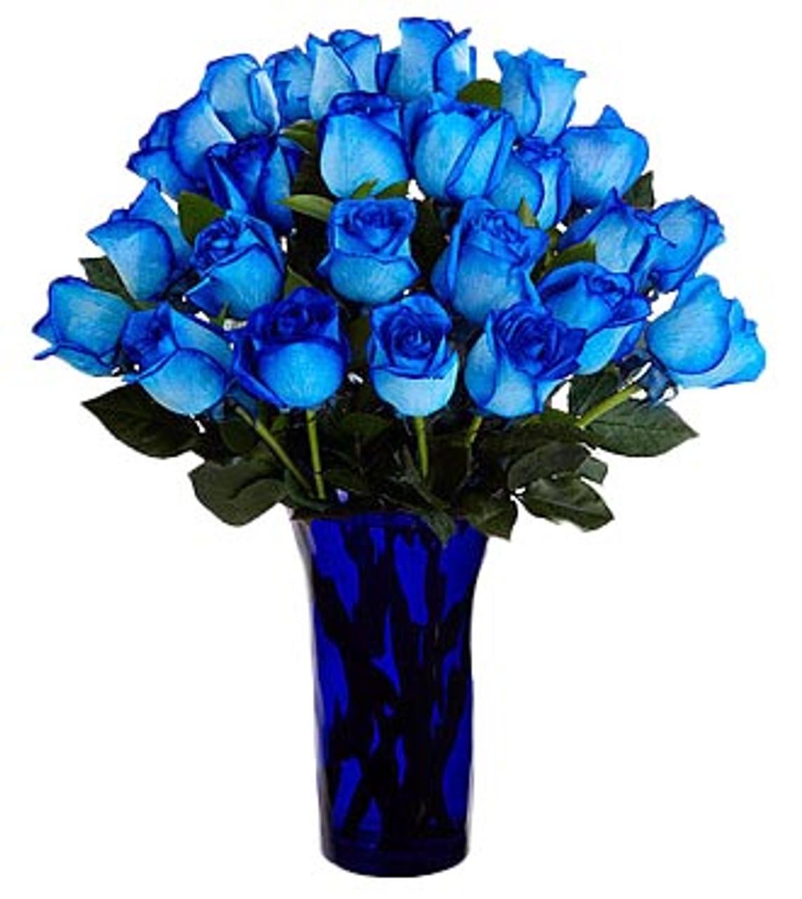 24 Blue Ecuadorian Roses