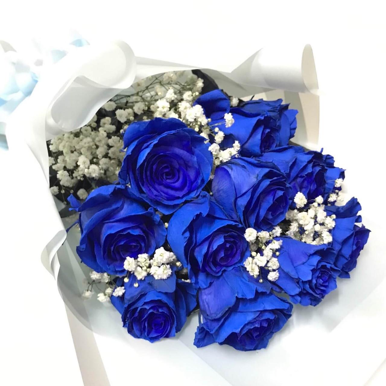 12 Blue Ecuadorian Roses