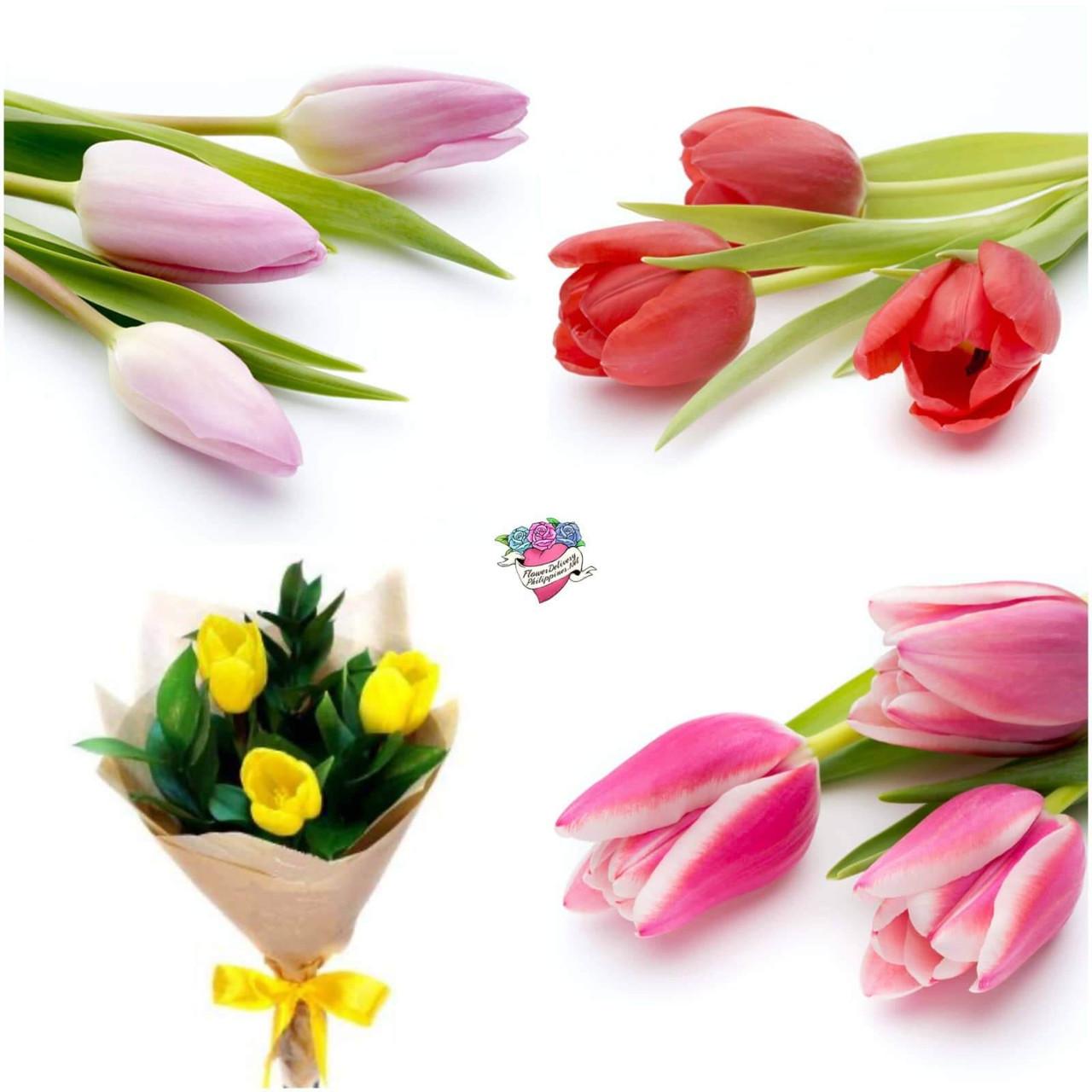 3 Tulips bouquet - Choose Tulips color!