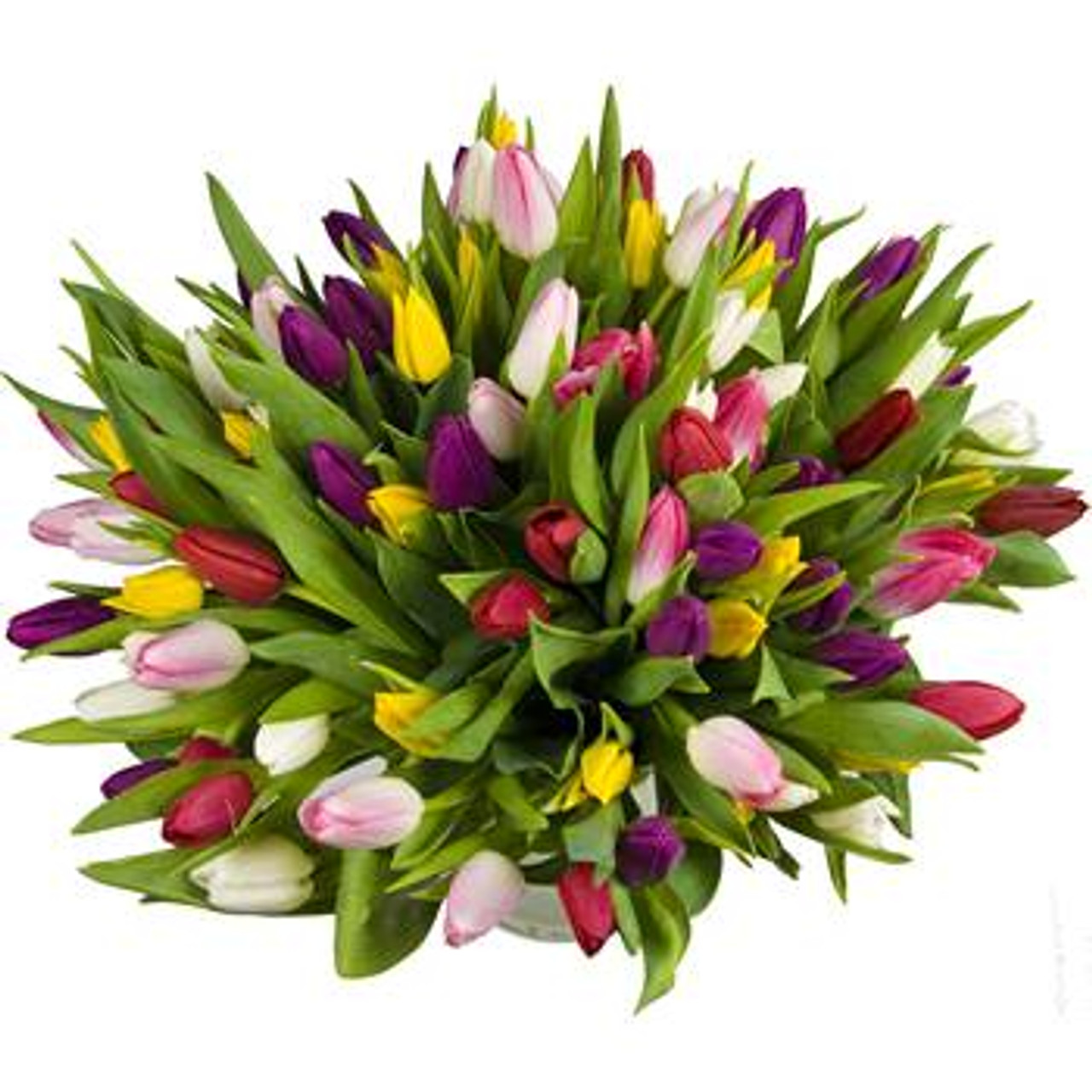 50 Assorted Tulips Grand Bouquet