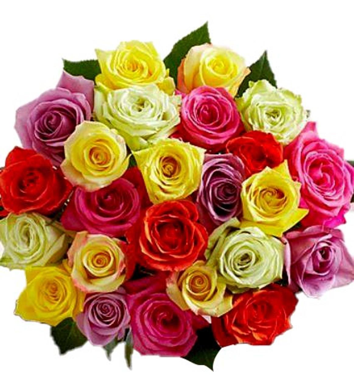 Assorted colors Ecuadorian Roses