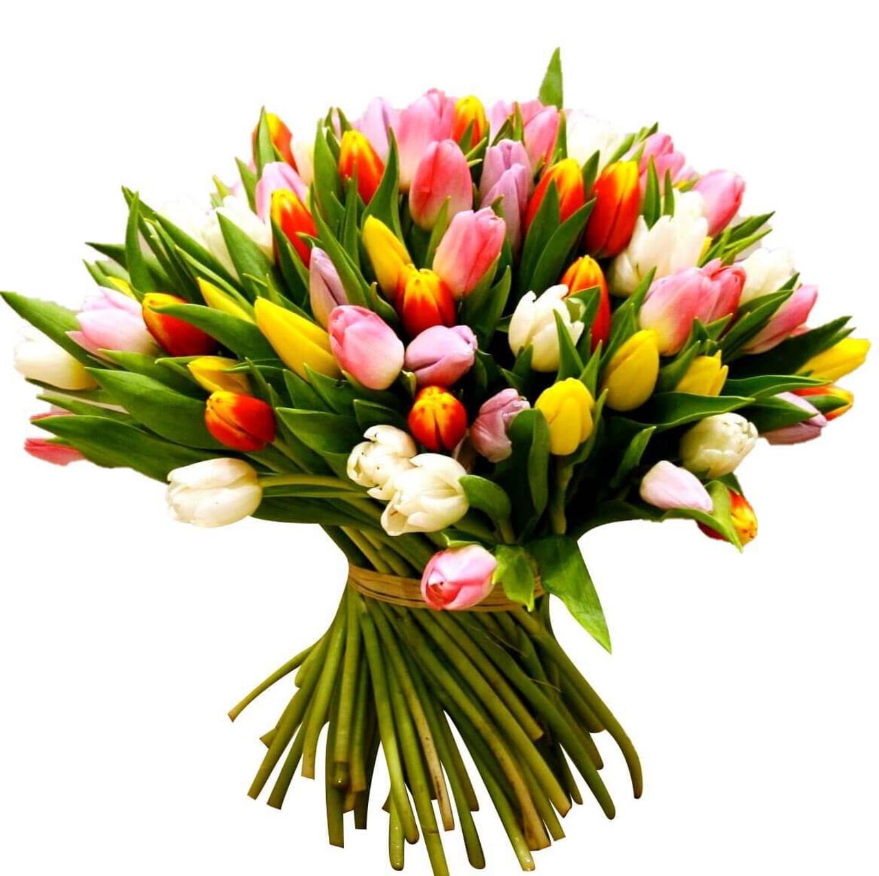 100 Tulips Giant Bouquet