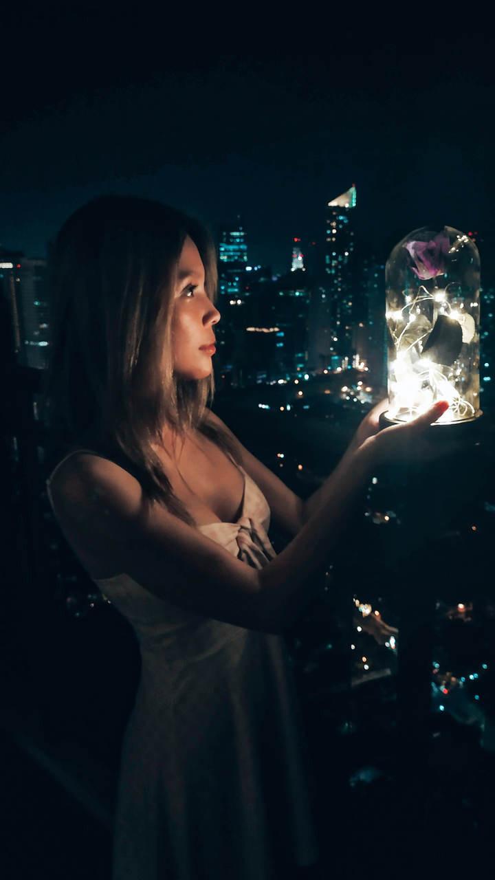 Violet Preserved Rose Fairy Lights Dome - BEST SELLER!