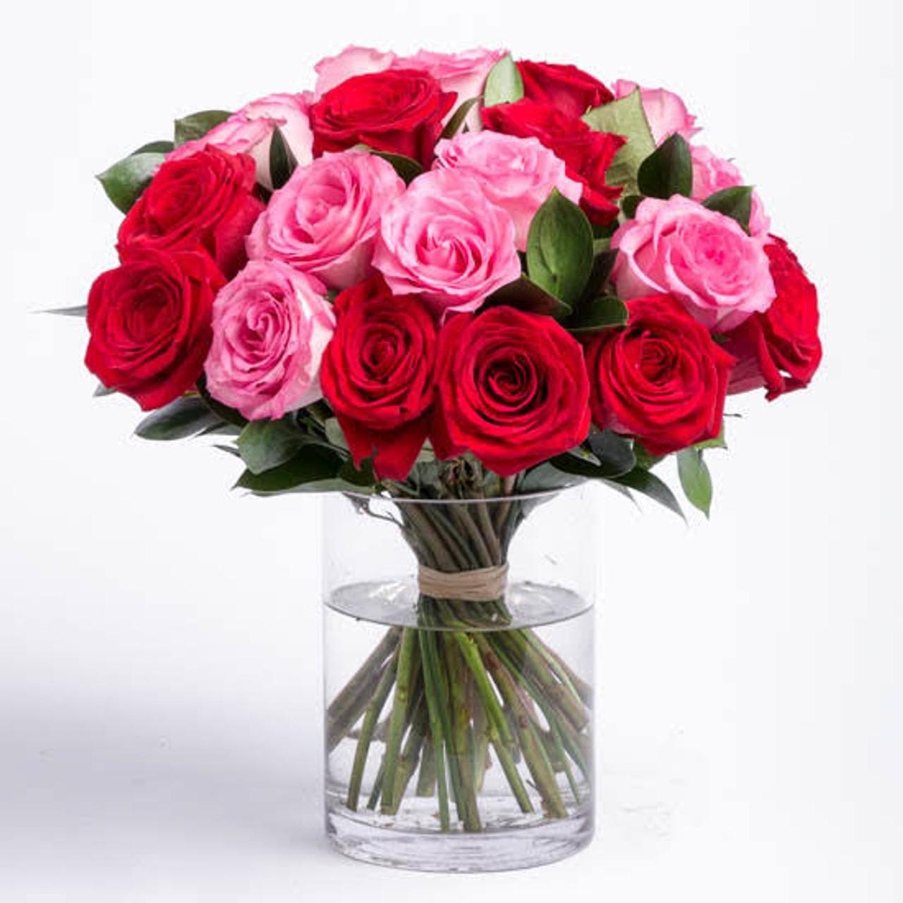 Pink & Red Luxury Ecuadorian Roses