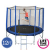 12ft Spring Trampoline with Net and Ladder