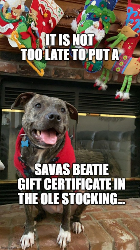 Gift Certificates Make a Great  . . . Gift!