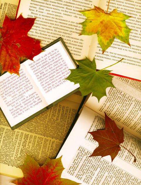 Fall at Savas Beatie