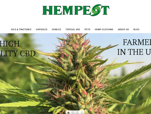 Hempest CBD Website Launch