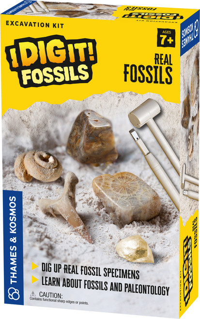 Real Fossils I Dig It! Fossils Excavation Kit