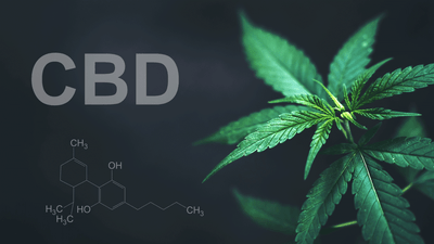 The Side Effects Of CBD