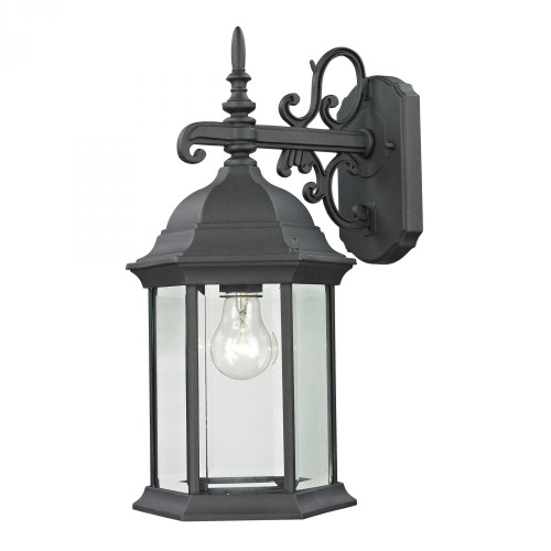 Outdoor Lights By Elk Cornerstone Spring Lake 1 Light Exterior Coach Lantern In Ma 8x16.5 8601EW/65