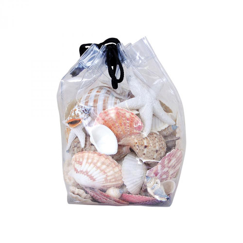 Brands/Pomeroy By Pomeroy Bag of Decorative Shells - Set of 2 002366/S2