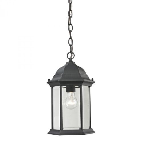Outdoor Lights By Elk Cornerstone Spring Lake 1 Light Exterior Hanging Lamp In Matte Black 8601EH/65