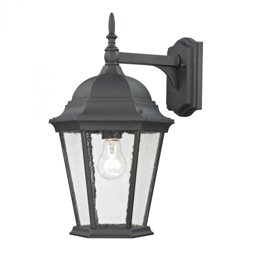 Outdoor Lights By Elk Cornerstone Temple Hill Coach Lantern In Matte Textured Black 9.5x18 8101EW/65