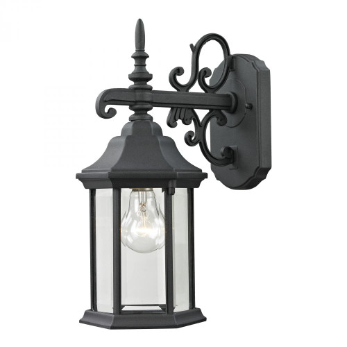 Outdoor Lights By Elk Cornerstone Spring Lake 1 Light Exterior Coach Lantern In Ma 6x15 8611EW/65