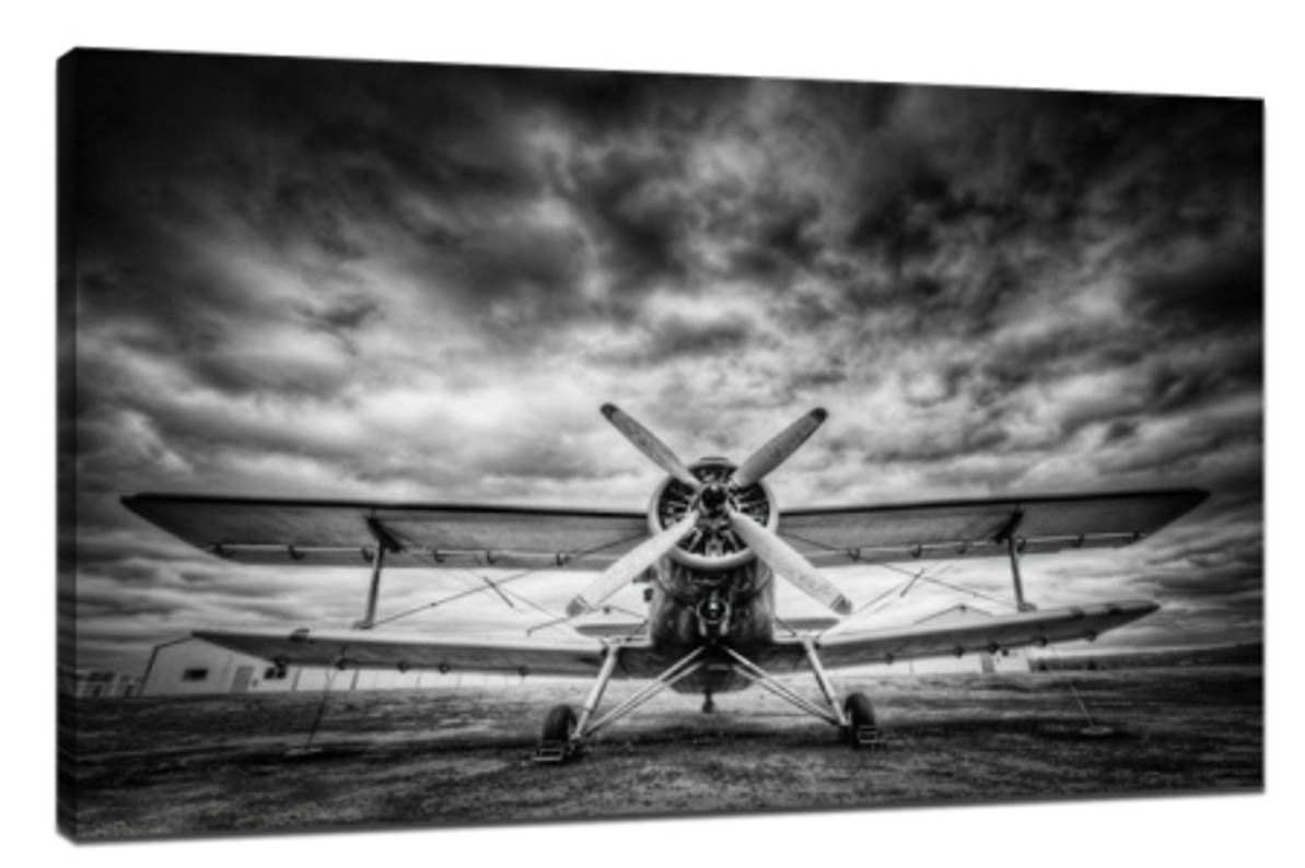 8 tips for how to shoot black and white photos