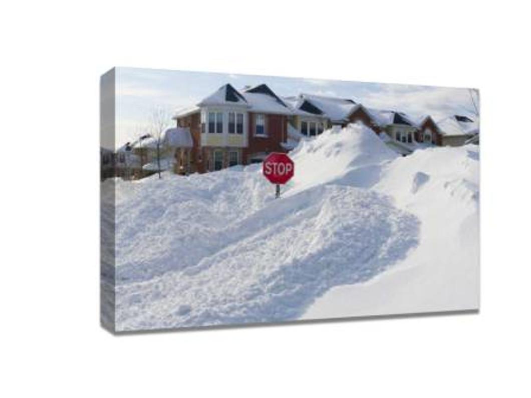 Take a beautiful snow scene