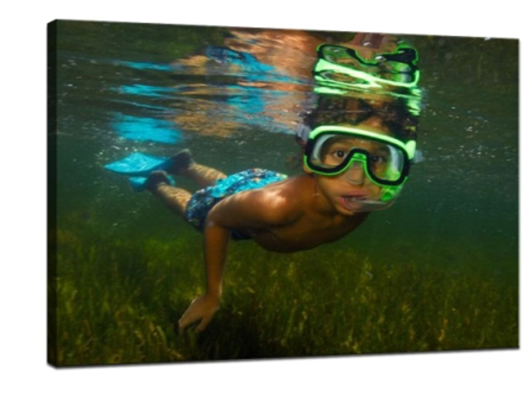 ​How to take great photos underwater