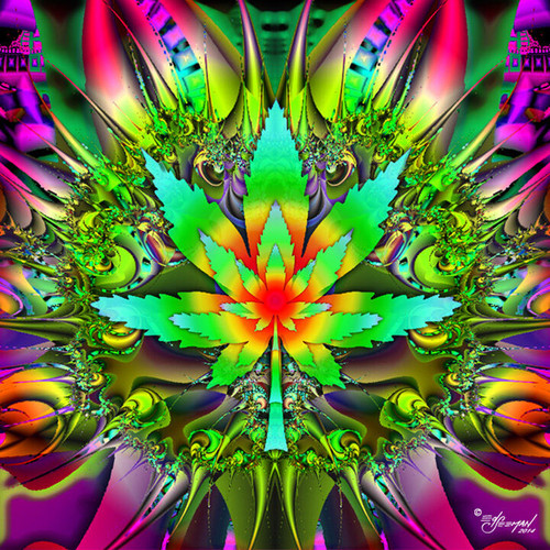 Marijuana Leaf Power T-Shirt or Poster Print by Ed Seeman